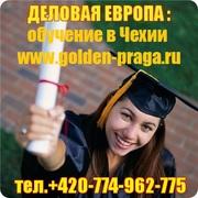 Престижные гимназии и колледжи Чехии